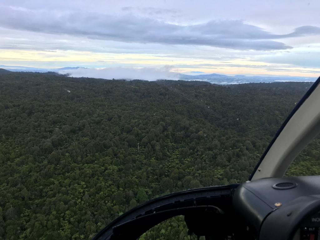Scenic-helicopter-flights - 98