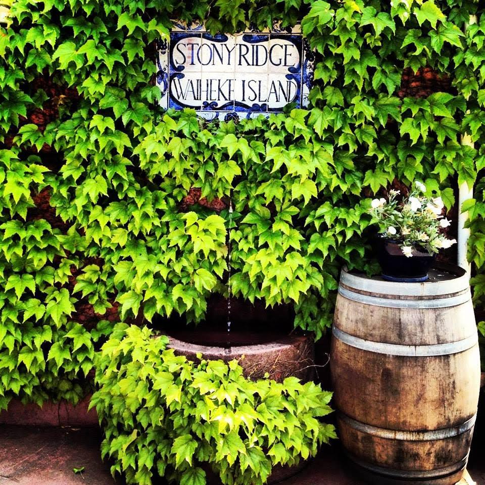 Stonyridge vines